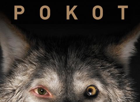 """""""Pokot"""" [VIDEO-RECENZJA]"""